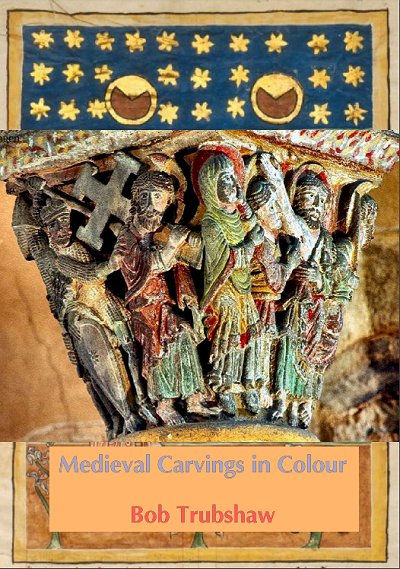 Medieval Carvings in Colour cover